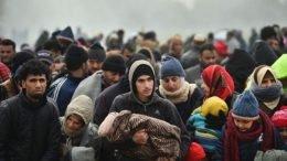 Šuhret Fazlić: Kada padne snijeg svi migranti će doći u Bihać