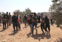 Gotovo 300 Palestinaca povrijeđeno u sukobima s izraelskom vojskom