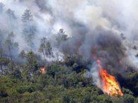 U Grčkoj bjesne požari: U toku akcije gašenja s kopna i iz zraka